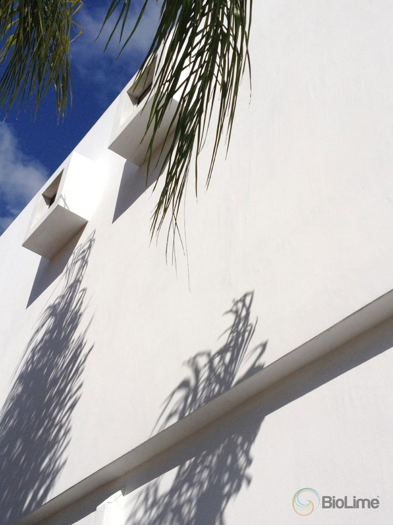 clean white, modern wall with BioLime
