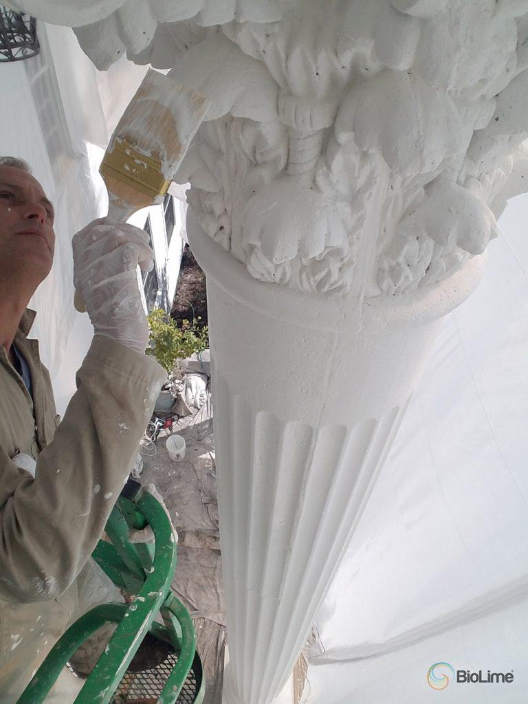 BioLime Paint on Column