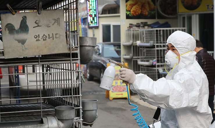 disinfecting bird flu outbreak